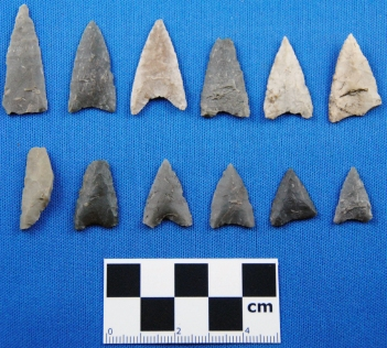 Dorset endblades from the Anstey site.